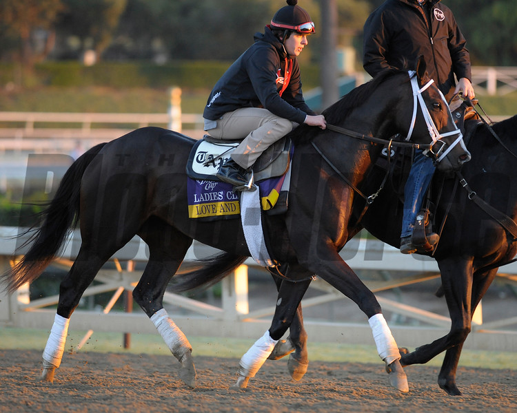Caption: Love and Pride<br /> Breeders' Cup morning works at Santa Anita near Arcadia, California, on Oct. 29, 2012.<br /> BCRACES2012 WorksMonday1 image124<br /> Photo by Anne M. Eberhardt