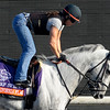 Caption: California Flag<br /> Breeders' Cup morning works at Santa Anita near Arcadia, California, on Oct. 31, 2012.<br /> BCRACES2012 WorksWed2 image804<br /> Photo by Anne M. Eberhardt