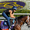 Caption: Upgrade with trainer Michelle Nihei up<br /> Breeders' Cup morning works at Santa Anita near Arcadia, California, on Oct. 29, 2012.<br /> BCRACES2012 WorksMonday1 image646<br /> Photo by Anne M. Eberhardt