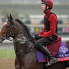 Caption: St. Nicholas Abbey with Joseph O'Brien<br /> Breeders' Cup morning works at Santa Anita near Arcadia, California, on Oct. 31, 2012.<br /> BCRACES2012 WorksThurs2 image915<br /> Photo by Anne M. Eberhardt