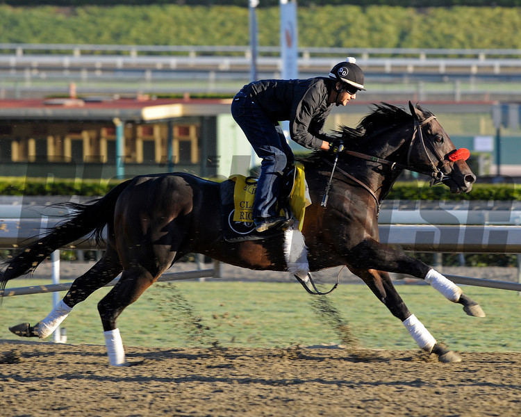 Caption: Richard's Kid<br /> Breeders' Cup morning works at Santa Anita near Arcadia, California, on Oct. 29, 2012.<br /> BCRACES2012 WorksMonday1 image328<br /> Photo by Anne M. Eberhardt