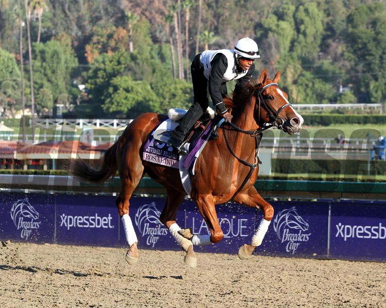 Rosalind Breeders' Cup Juvenile Fillies Chad B. Harmon
