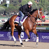 Broadway Empire Breeders' Cup Dirt Mile Chad B. Harmon