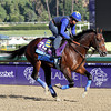 New Year's Day Breeders' Cup Juvenile Chad B. Harmon