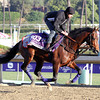 London Bridge Breeders' Cup Marathon Chad B. Harmon
