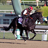 Dance With Fate Breeders' Cup Juvenile Chad B. Harmon