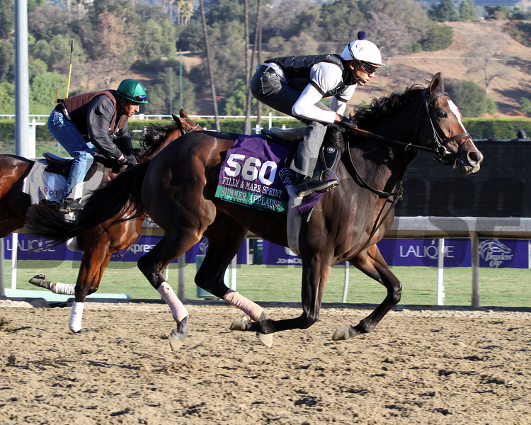 Summer Applause Breeders' Cup Filly & Mare Sprint Chad B. Harmon