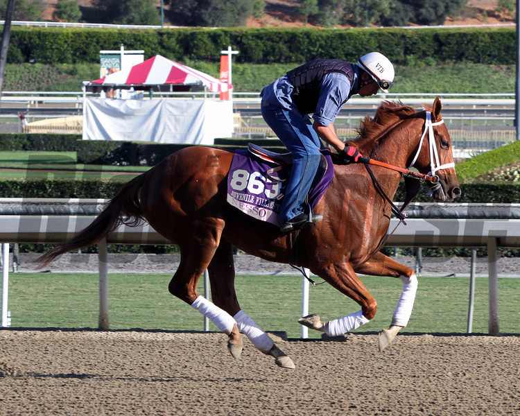 Nesso Breeders' Cup Juvenile Fillies Turf Chad B. Harmon