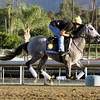 Poker Player Breeders' Cup Juvenile Turf Chad B. Harmon