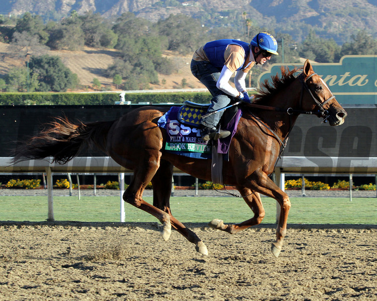 Book Review Breeders' Cup Filly & Mare Sprint Chad B. Harmon