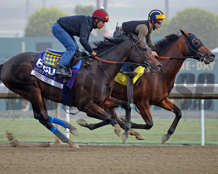 Caption:  Fed Biz with Martin Garcia starts to overtake his workmate<br /> Breeders' Cup horses and connections at Santa Anita near Acadia, California, preparing for Breeders' Cup raceways on Nov. 1 and Nov. 2, 2013.<br /> BCWorks02Jpegs_10_27_13 image047<br /> Photo by Anne M. Eberhardt
