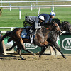 Summer Applause - Belmont Work, October 26, 2013.<br /> Coglianese Photos