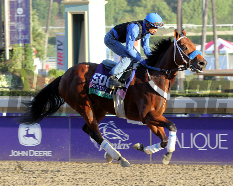Majestic Stride Breeders' Cup Sprint Chad B. Harmon