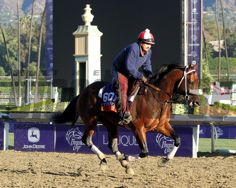 Chips All In Breeders' Cup Turf Sprint Chad B. Harmon