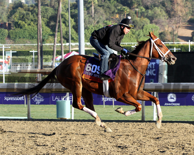Tightend Touchdown Breeders' Cup Turf Sprint Chad B. Harmon