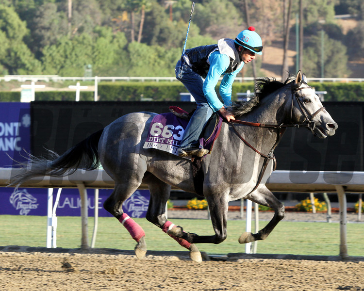 Holy Lute Breeders' Cup Dirt Mile Chad B. Harmon