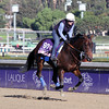 Secret Compass Breeders' Cup Juvenile Fillies Chad B. Harmon