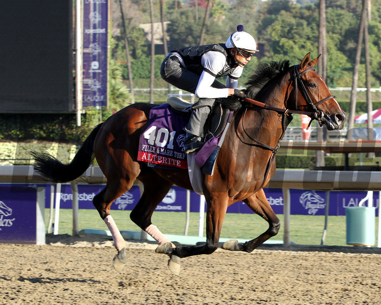 Alterite Breeders' Cup Filly & Mare Turf Chad B. Harmon