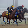Caption:  New Years Day inside works with Dan's Legacy<br /> Breeders' Cup horses and connections at Santa Anita near Acadia, California, preparing for Breeders' Cup raceways on Nov. 1 and Nov. 2, 2013.<br /> BCWorks02Jpegs_10_27_13 image084<br /> Photo by Anne M. Eberhardt