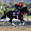 Laugh Track Breeders' Cup Sprint Chad B. Harmon