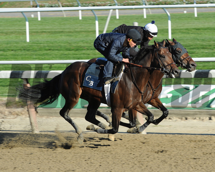 Last Gunfighter and Easter Gift work at Belmont Park on October 26, 2013.<br /> Coglianese Photos
