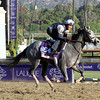 Ready To Act Breeders' Cup Fillies Turf Chad B. Harmon