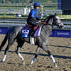 Caption:  Outstrip<br /> Breeders' Cup horses and connections at Santa Anita near Acadia, California, preparing for Breeders' Cup raceways on Nov. 1 and Nov. 2, 2013.<br /> BCWorks1Jpegs_10_31_13 image856<br /> Photo by Anne M. Eberhardt