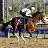 Colonel Joan Breeders' Cup Juvenile Fillies Turf Chad B. Harmon