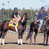 Flat Out Bill Mott Breeders' Cup Classic Chad B. Harmon