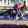 Qushchi Breeders' Cup Filly & Mare Turf Chad B. Harmon