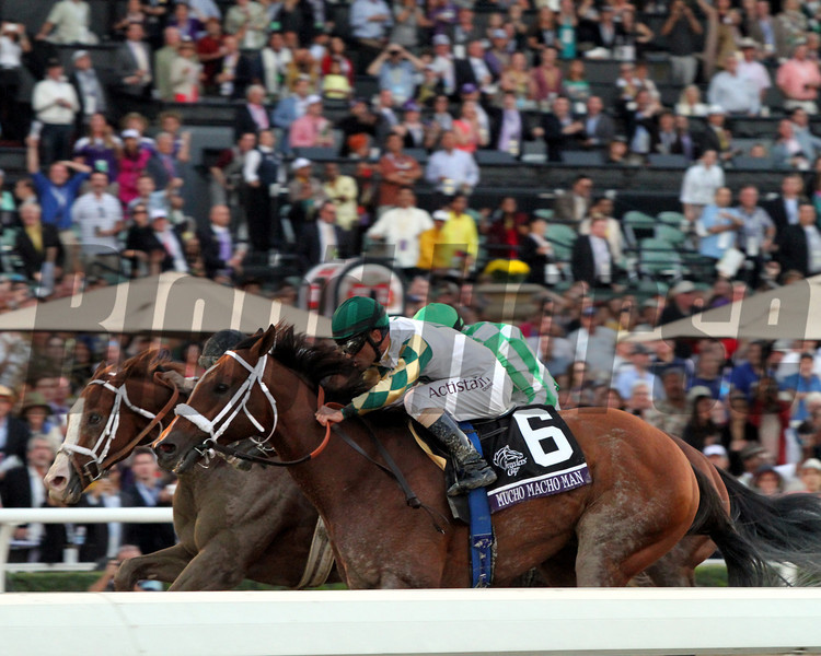 Mucho Macho Man Declaration Of War Will Take Charge Breeders' Cup Classic Chad B. Harmon