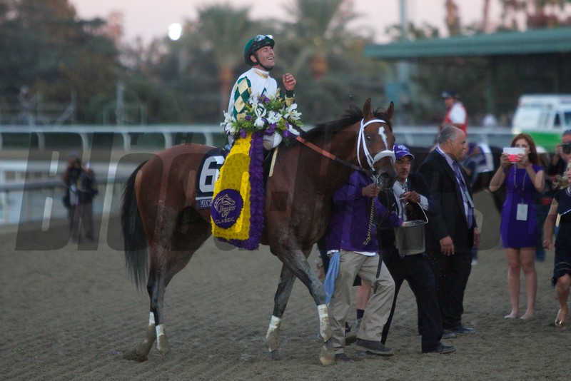 Gary Stevens was all smiles after winning the Breeders' Cup Classic (G. I) atop Mucho Macho Man. Photo by Crawford Ifland.