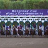The horses broke from the gate for the Breeders' Cup Classic (G. I). Photo by Crawford Ifland.
