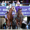 Will Take Charge Breeders' Cup Classic Santa Anita Park Chad B. Harmon