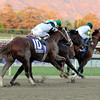 The Breeders' Cup Classic is won by Mucho Macho Man.<br /> Photo by Dave Harmon