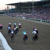 The field charged down the stretch in the Breeders' Cup Classic (G. I). Photo by Crawford Ifland.