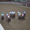 The horses came down the stretch for the first time in the Breeders' Cup Classic (G. I).Photo by Crawford Ifland.