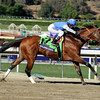 Goldencents with Rafael Bejarano win the Breeders' Cup Dirt Mile (GI) at Santa Anita Park on November 1, 2013.<br /> Dave Harmon Photo