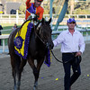 Beholder wins the 2013 Breeders' Cup Distaff.<br /> Dave Harmon Photo