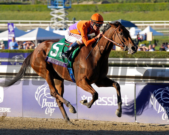2013 Breeders' Cup