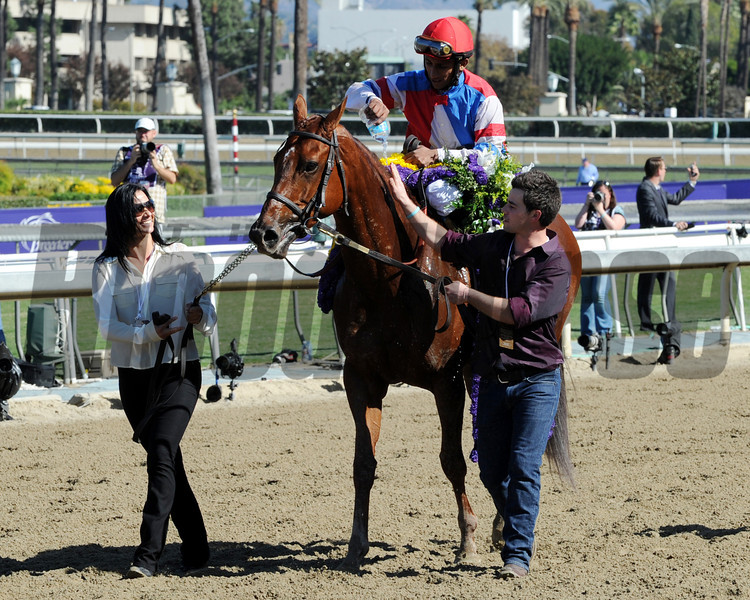 Caption: Groupie Doll with Rajiv Maragh wins 2013 the Breeders' Cup Filly and Mare Sprint.<br /> Dave Harmon Photo