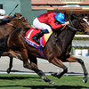Dank with Ryan Moore up wins the Breeders' Cup Filly & Mare Turf at Santa Anita Park on November 2, 2013<br /> Dave Harmon Photo