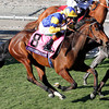 Chriselliam Breeders' Cup Juvenile Fillies Turf Chad B. Harmon