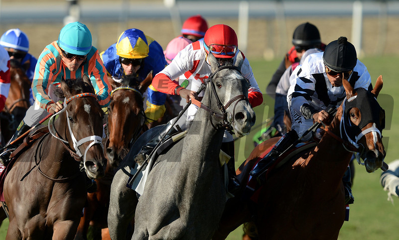 Chriselliam and jockey Richard Hughes, blue and yellow silks, look for room turning into the stretch but would win the Breeders Cup Juvenile Fillies Turf at Santa Anita. Photo by Wally Skalij
