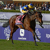 Chriselliam with jockey Richard Hughes wins the Breeders' Cup Juvenile Fillies Turf GI at Santa Anita Race Track Nov. 1, 2013.  Photo by Skip Dickstein