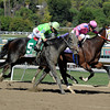 Ria Antonia wins the 2013 Breeders' Cup Juvenile Fillies.<br /> Dave Harmon
