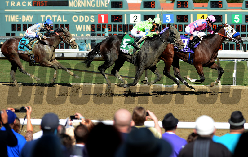 She's a Tiger leads Ria Antonia, center, and Sweet Reason down the stretch in the Breeders Cup Juvenile Fillies at Santa Anita. Photo by Wally Skalij