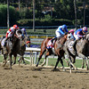 2013 Breeders' Cup Juvenile<br /> Dave Harmon Photo