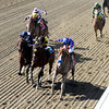 Breeders' Cup Marathon Stretch Chad B. Harmon