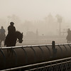 Caption:  foggy morning<br /> Breeders' Cup horses and connections at Santa Anita near Acadia, California, preparing for Breeders' Cup raceways on Nov. 1 and Nov. 2, 2013.<br /> BCWorks02RAW_10_27_13 image973<br /> Photo by Anne M. Eberhardt
